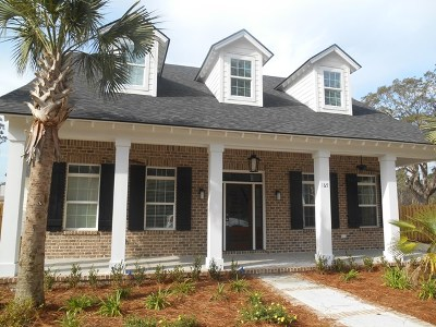 St. Simons Island Single Family Home For Sale: 165 Harrington Lane