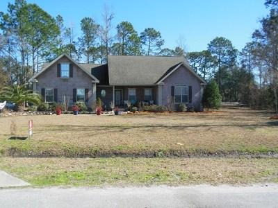 Brunswick Single Family Home For Sale: 54 Silver Bluff Drive