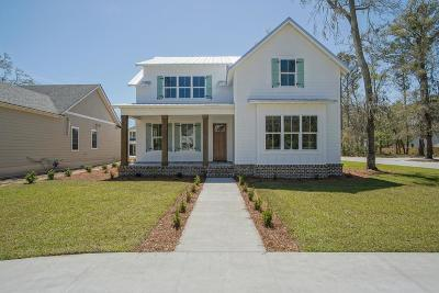 St. Simons Island Single Family Home For Sale: 223 Township Bluff Circle