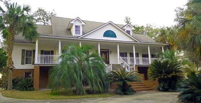 Townsend Single Family Home For Sale: 1250 Riverpoint Drive