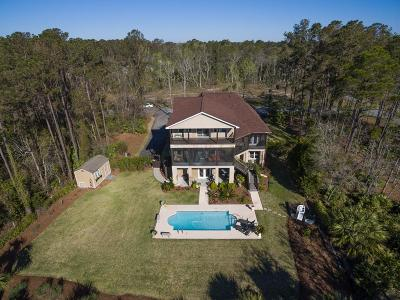 Brunswick Single Family Home For Sale: 201 Palm Trace