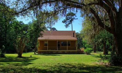 Brunswick Single Family Home For Sale: 201 Dell Lane