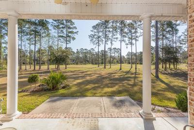 Townsend Single Family Home For Sale: 1297 Cooper's Point Drive NE