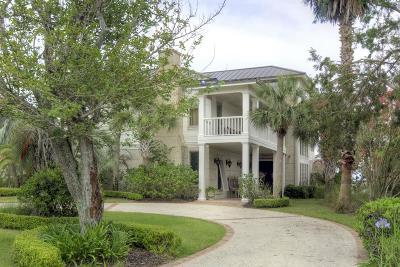 Brunswick Single Family Home For Sale: 110 Julienton Island Drive