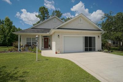 Brunswick Single Family Home For Sale: 123 Amber Mill Circle