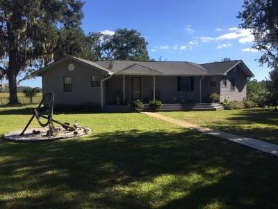 Shellman Bluff Single Family Home For Sale: 1015 Chimney River Drive