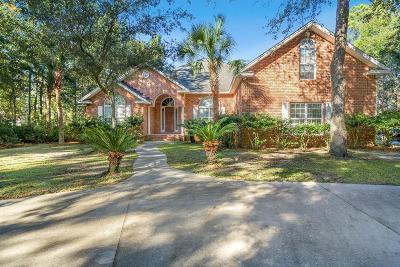 Brunswick Single Family Home For Sale: 106 Serenoa Drive