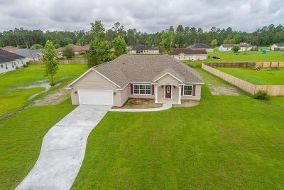 Brunswick Single Family Home For Sale: 109 Silver Bluff Circle