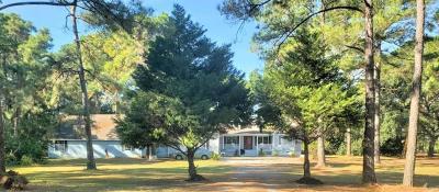Brunswick Single Family Home For Sale: 1699 Blythe Island Drive