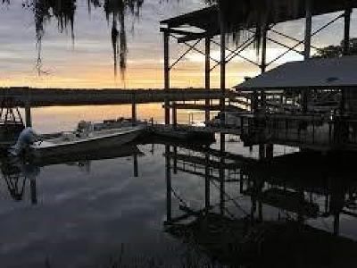 Shellman Bluff Single Family Home For Sale: 1031 Moore Haven Circle NE Circle NE