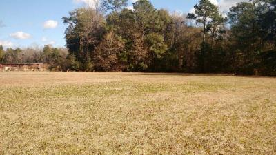 Residential Lots & Land For Sale: 3.56 Butler Street