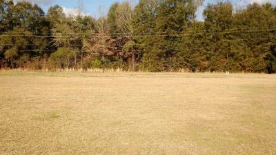 Residential Lots & Land For Sale: 1.21 Butler Street