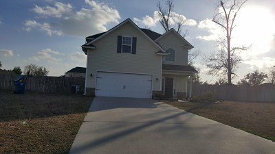 HINESVILLE Single Family Home For Sale: 553 Mustang Lane NE