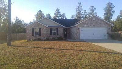 Ludowici Single Family Home For Sale: 140 Jackson Avenue NE