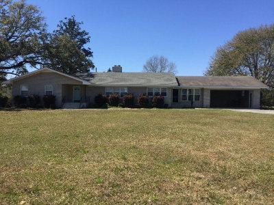 Glennville Single Family Home For Sale: 4981 Beards Creek Church Road