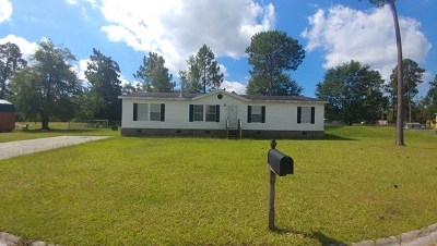 Long County Single Family Home For Sale: 110 Willow Drive