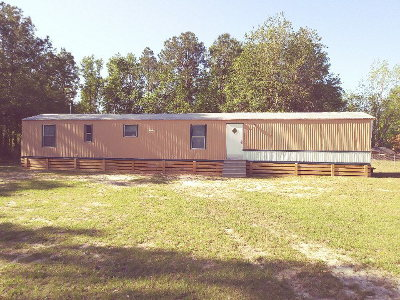 Walthourville Single Family Home For Sale: 879 Talmadge Road