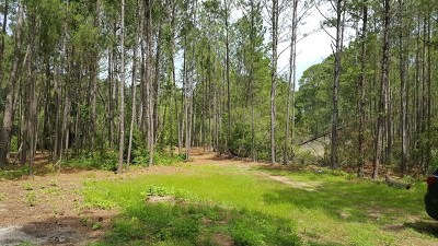 Residential Lots & Land For Sale: Cattle Hammock Road