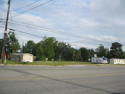 Jesup Single Family Home For Sale: 4050 Savannah Highway