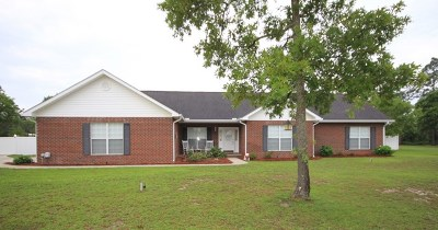 Jesup Single Family Home For Sale: 461 Cody Drive