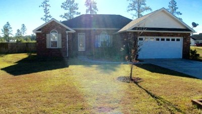 Ludowici Single Family Home For Sale: 239 Jackson Avenue NE