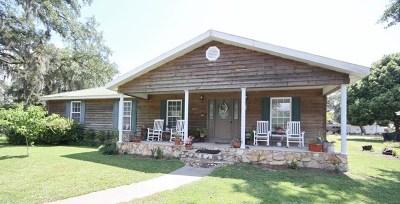 Jesup Single Family Home For Sale: 243 Black Street