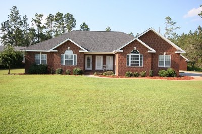 Jesup Single Family Home For Sale: 123 Clearwater Drive