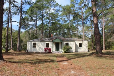 Jesup Single Family Home For Sale: 256 Bamboo Street