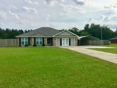 Ludowici Single Family Home For Sale: 351 Bell Road NE
