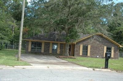 Hinesville Single Family Home For Sale: 807 Madison Drive