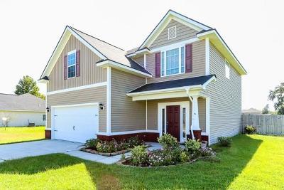 Ludowici Single Family Home For Sale: 159 Highland Pony Way NE