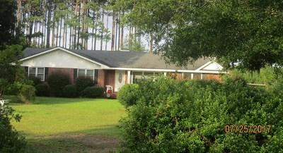 Ludowici Single Family Home For Sale: 998 Alma Flournoy Road