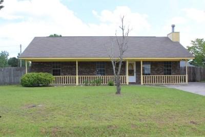 Hinesville Single Family Home For Sale: 637 Honey Ridge Lane