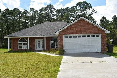Ludowici Single Family Home For Sale: 95 Shelby Rae Court NE