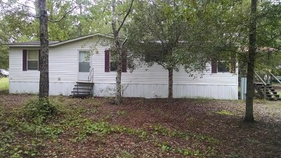 Jesup Single Family Home For Sale: 307 Cowboy Road