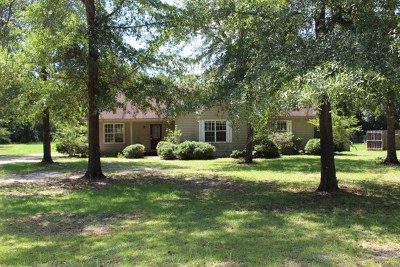 Jesup Single Family Home For Sale: 288 Melody Drive