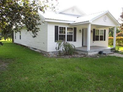 Ludowici Single Family Home For Sale: 12 Gill Street SW