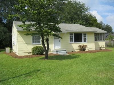 Jesup Single Family Home For Sale: 263 Dreamland Street