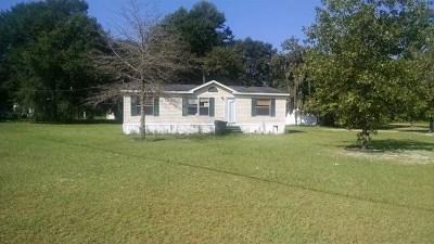 Jesup Single Family Home For Sale: 80 River Ridge Circle