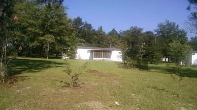 Jesup Single Family Home For Sale: 995 Shrine Club Road