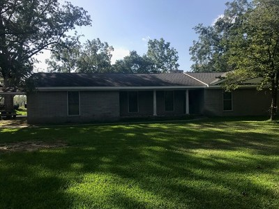 Jesup Single Family Home For Sale: 897 New Hope Road