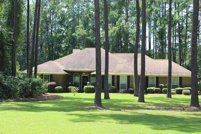 Hinesville Single Family Home For Sale: 221 Kallquist Drive