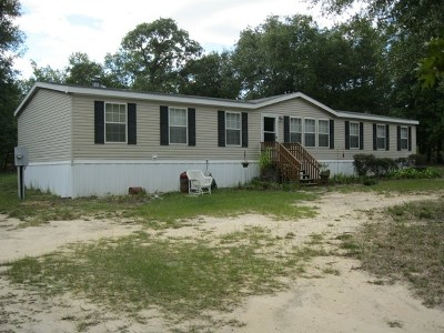 Jesup Single Family Home For Sale: 1076 Sandy Run Road