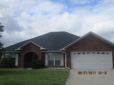Single Family Home For Sale: 204 Slayton Circle