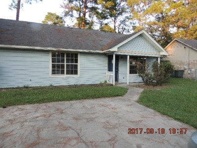 Hinesville Single Family Home For Sale: 809 Olive Street