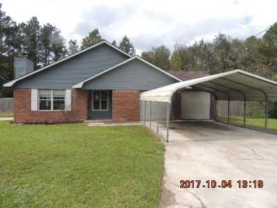Long County Single Family Home For Sale: 253 Davenport Drive NE