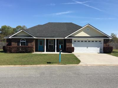 Ludowici Single Family Home For Sale: 185 Miller Street NE