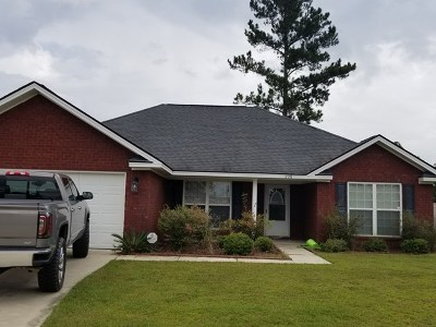 Ludowici Single Family Home For Sale: 238 Mill Pond Lane SE