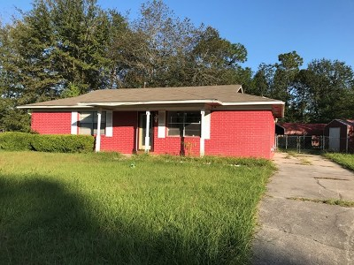 Hinesville Single Family Home For Sale: 243 Deerwood Drive