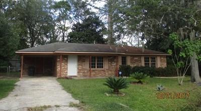 Hinesville Single Family Home For Sale: 214 Honeylane Circle